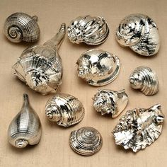 This idea for spray painting seashells (to replicate pricey silver shells like the ones pictured here) comes from Dishfunctional Designs