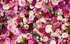 Kate Spade: everything is coming up roses