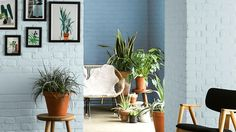 From chalky blues to fiery reds: 10 ways to make your home more colourful Decor, Home Decor Inspiration, Colorful Interiors, Interior, Dream Room, Diy Wallpaper, Vintage Rugs, Color, Home Decor
