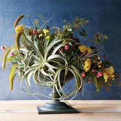 bold bouquet of tillandsias and flowers