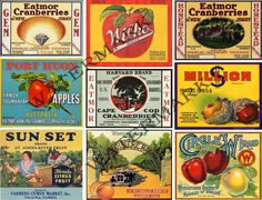 Vintage Fruit Crate Labels, Antique Fruit Box, Old Vegetable Labels, Farmers Market, Produce, Altered Arts Supply, Dusty Attic Treasures, 59 by retrowallart on Etsy