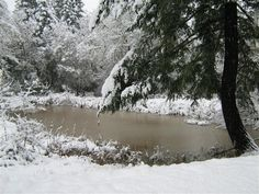 This was our pond when it was frozen. Took this picture a while back, almost 4 years