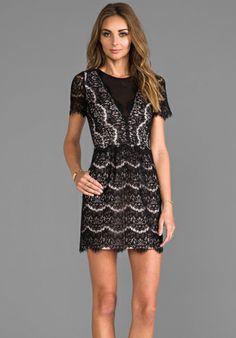 DV by Dolce Vita Saurus Eyelash Lace Dress in Black
