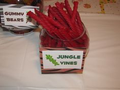 """Photo 1 of 75: zoo Animals / Birthday """"Mallory's Wild Jungle Party """" 