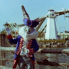 SFGAm Instagram - #FlashbackFriday Bugs Bunny posing in Yankee Harbor in 1976 Six Flags America, Great America, Water Parks, Bugs Bunny, Amusement Parks, Roller Coaster, Childhood Memories, Pop Culture, Meet