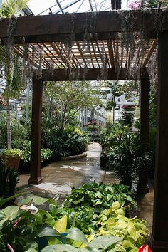 Lanoha Nurseries Garden Center tropical plants area of the main greenhouse in Omaha, Nebraska.
