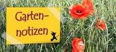 Gartenkalender JULI: Zwischen Donner und Sommer – Einfach selbstgehext!