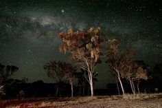 Australian Night Sky - NSW