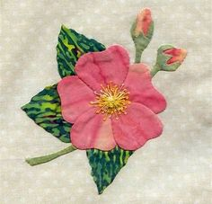 Image result for 25 different wild flower quilt.