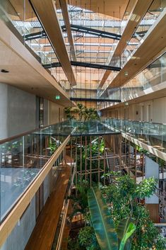 A green hotel in every sense of the word. Bamboo flooring, panels, wall coverings, slats etc. Jakarta, Amsterdam, Bamboo, Stairs, Flooring, Wall, Green, Home Decor, Stairway