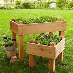 Cedar Bed-on-Legs Kit, 2' x 4'   Williams-Sonoma... another need-to-make/copy item!