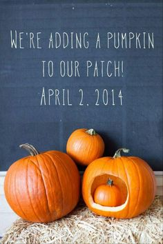 Super cute baby announcement for Fall! (Source unknown.)