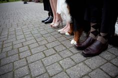 Wedding Party includes Bernese Mountain Dog - by Michelle Cervo...I think Happy would be slightly more obvious if he was at our wedding..