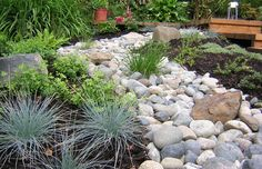 Image result for rock garden adjacent to patio