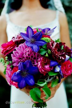 Love the rich colors in this shades of purple bouquet. dahlia + clematis + roses