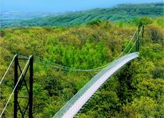 Two hours away ! CHECK--Scenic Caves Suspension Bridge long), Collingwood, ON. The longest suspension bridge in Ontario. Also open in winter! Voyage Canada, Wasaga Beach, Ontario Travel, Kayak, Suspension Bridge, Nature Adventure, Canada Travel, Blue Mountain, Places To See