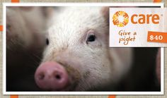 For many families in need, the gift of a pig is nothing short of a miracle. Piglets can be bred and sold, providing a generous source of income to feed and clothe children. Pig-out and give as many pigs as you can! $40
