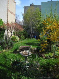 Community Gardening Opportunities in New York  http://voices.yahoo.com/community-gardening-opportunities-york-11446944.html?cat=27