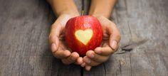 Blog de la Sociedad Española de Seguridad Alimentaria (SESAL) | Actualidad en los Medios de Comunicación sobre Seguridad Alimentaria, Tecnología de los Alimentos, Legislación, Consumo, Nutrición y Salud y Calidad de Vida