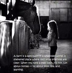 Barn Horse Quotes. QuotesGram by @quotesgram