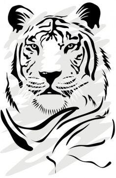 tiger image 06 vector