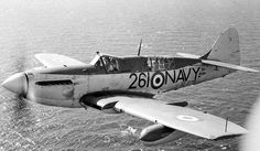 Royal Australian Navy Fairey Firefly