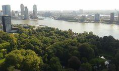 Rotterdam itt: Zuid-Holland