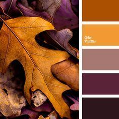 beige-brown, brown color, fall color palette, fall colors, fall palette, leaves color, orange color, purple colors, reddish brown, shades of brown.