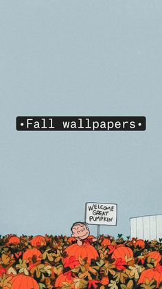 •Fall wallpapers•