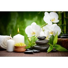 décor zen ambiance SPA papier peint personnalisé tapisserie numérique sur mesure les orchidées et les bambous