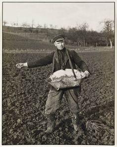 """Nesta foto podemos ver um agricultor no seu local de trabalho """"campo"""".Idade compreendida entre os 45 e os 55 anos. Quanto ao seu vestuário adequa se a sua ao trabalho que esta a desempenhar usa galochas roupa larga e um utensílio onde transporta as sementes... Como ja nos habituou August o senhor esta a olhar para a câmara. O cenário da fotografia podemos constatar que é um tipo de terreno agriculta visto que se encontra trabalhado """"lavrado""""."""
