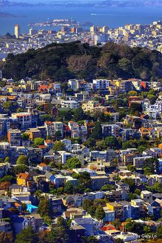 San Francisco~ #cityscape #SanFrancisco #Alcatraz