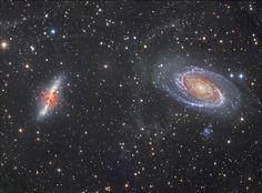 M81, M82 and Arps Loop