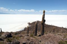 Déjate sorprender por la inmensidad de nuevos lugares. #viajacongeotours #viajaresvivir #uyuni #lamejorexperiencia