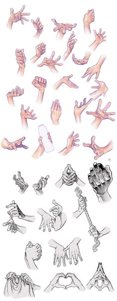 Hand Compilation by Tamasaburo89 on DeviantArt