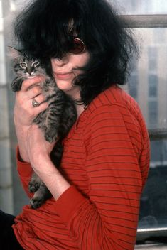 Punk Rock Gray Kitten with his very own Joey Ramone !!  gabba gabba we accept you we accept you!