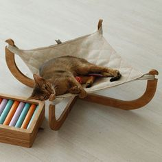 Cat hammock Posh cat bed Cat beds cat furniture pet furniture luxury cat beds gift for cat lovers catlover gift chritsmas gift Cat Cat Lover Gifts, Cat Gifts, Cat Lovers, Pet Furniture, Apartment Furniture, Modern Cat Furniture, Furniture Cleaning, Furniture Removal, Luxury Furniture