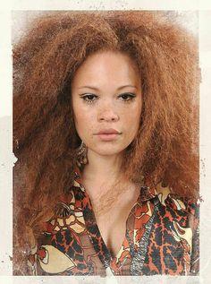 Black Redhead 2