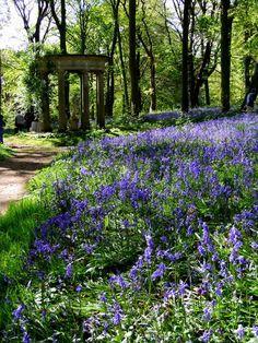 Renishaw Hall gardens, England