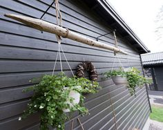 Allotment Gardening, Greenhouse Gardening, Terrace Garden, Dream Garden, Garden Planning, Yard Art, Outdoor Spaces, Outdoor Gardens, Planter Pots
