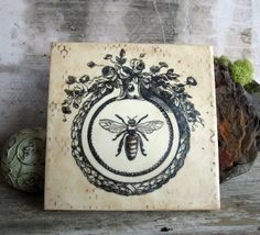 French vintage bee