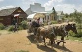 Pioneer Farms (Austin, TX) - Step back in time to 1800s Texas at Pioneer Farms, on five restored, working homesites where costumed interpreters recreate life just like it was. Get coupon at http://couponsforfun.com/couponsforfun.com/Texas_Attraction_savings.html