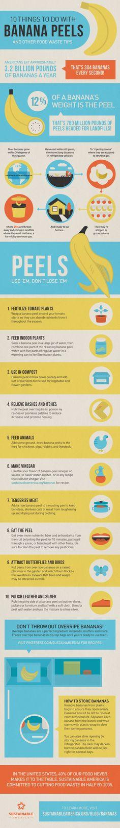 10 Things to Do With Banana Peels   #infographic #Banana #Waste #DIY #Environment