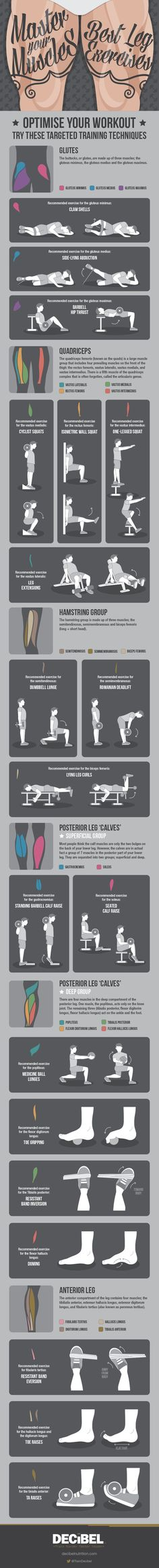 Master Your Muscles: Best Leg Exercises #infographic #Exercise #Health #Fitness #Gym #Workout #Leg #LegExercise