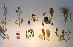 Vivian Hyelim Kim, New York, Artist in Residence, December 2013