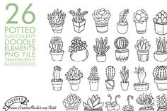 Potted Succulent Cactus Hand Drawn by Nedti on Creative Market