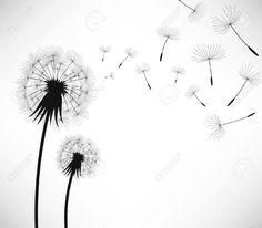8513552-Tarassaco-fiore-di-colpo-di-vento-Archivio-Fotografico.jpg (1300×1137)