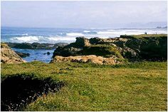 ~ Ocean View Lodge ~ 180 Degree Whitewater Ocean View on the Mendocino Coast in Fort Bragg, California with Private Balcony/Patio, Whirlpool, and Fireplaces located on the Ten Mile Coastal Trail with Miles Of Beach Access.