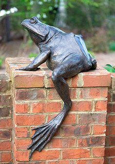 """Jeremiah"" Frog Art by Roger Martin"