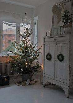 Look at this size of a TREE...Perfect! It's not full and the Star won't be touching the ceiling...This is what I consider the Perfect Sized Tree :)